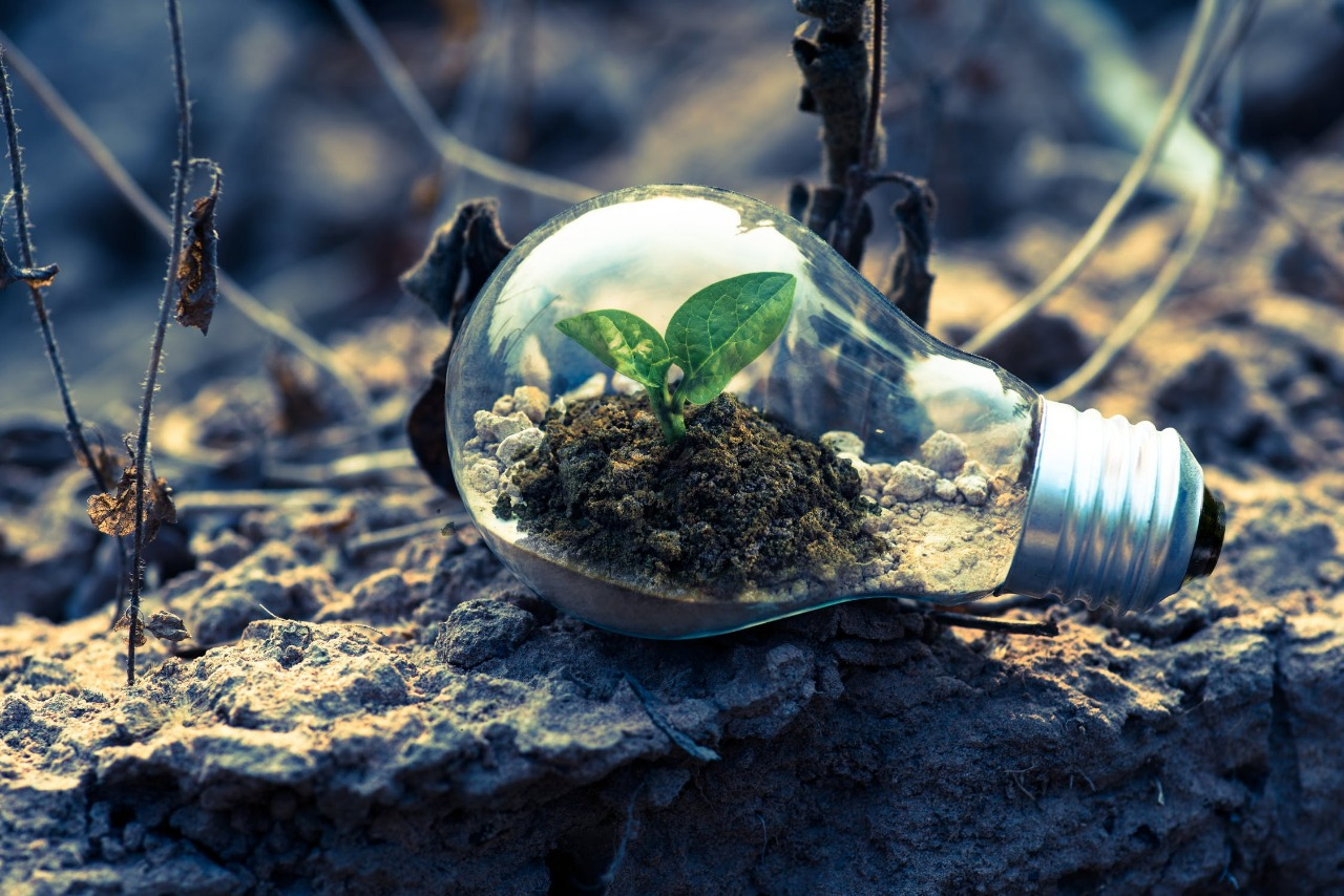 Green bonds for a better climate