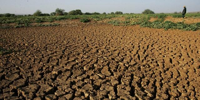 Problema de sequía en Guatemala