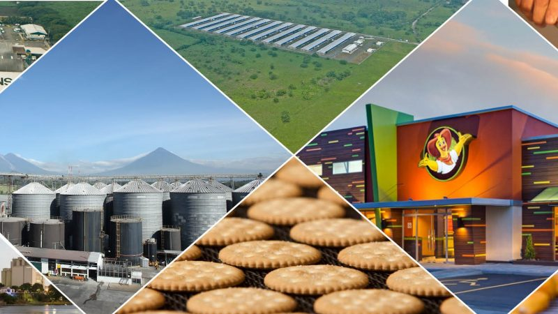 Agricultural sector Guatemala