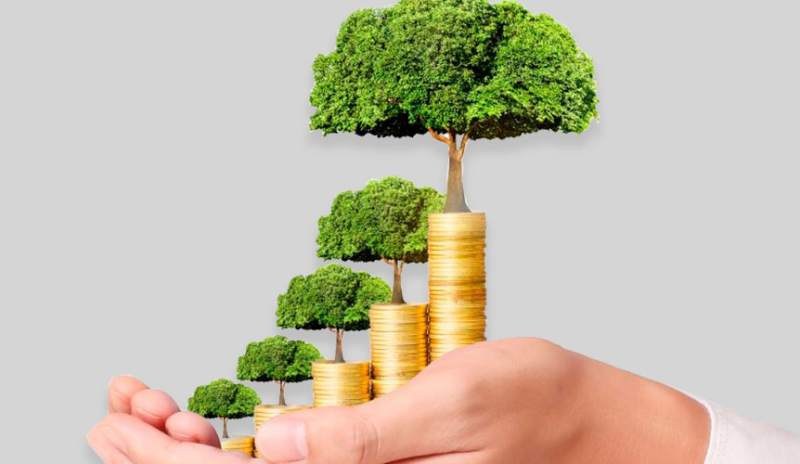 Empresa CMI coloca bonos verdes