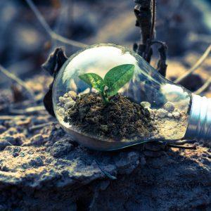 Bonos verdes para un mejor clima