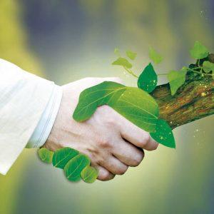 Finanzas verdes en América Latina y el Caribe